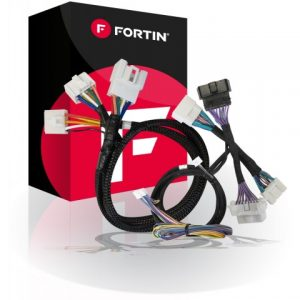 Fortin-THAR-ONE-TOY4